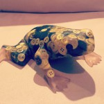 Button frog from Buenos Aires #buttons #frog #unique